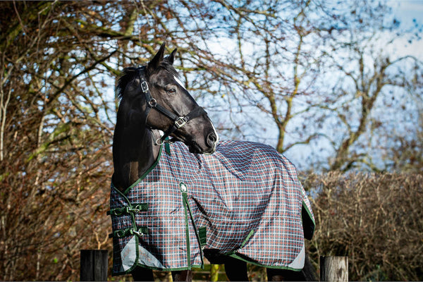 Epic® Classic 50g Turnout Rug - Regular Fit