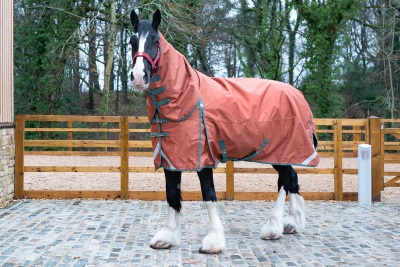 Epic® Essential 200g Combo Turnout Rug  -  Broad Fit