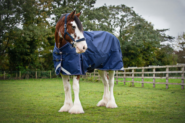 Epic® Essential 50g Turnout Rug  -  Broad Fit