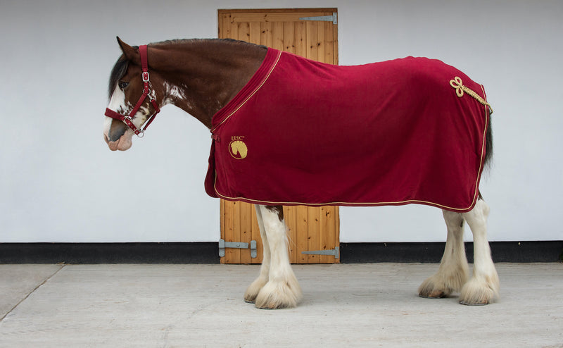 Epic® Classic Deluxe Show Rug - Broad Fit