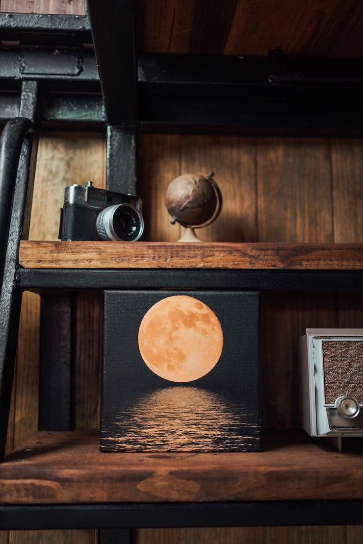 The Light of the Moon Art Canvas