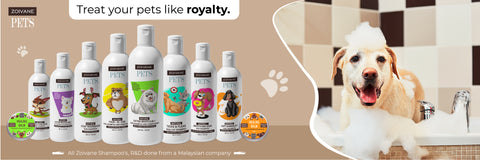 How To Choose The Right Shampoo for Your Pet