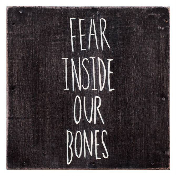 "The Almost ""Fear Inside Our Bones"" LP"