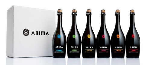 Birra Anima- Beer Tasting 6 Pack 330mL