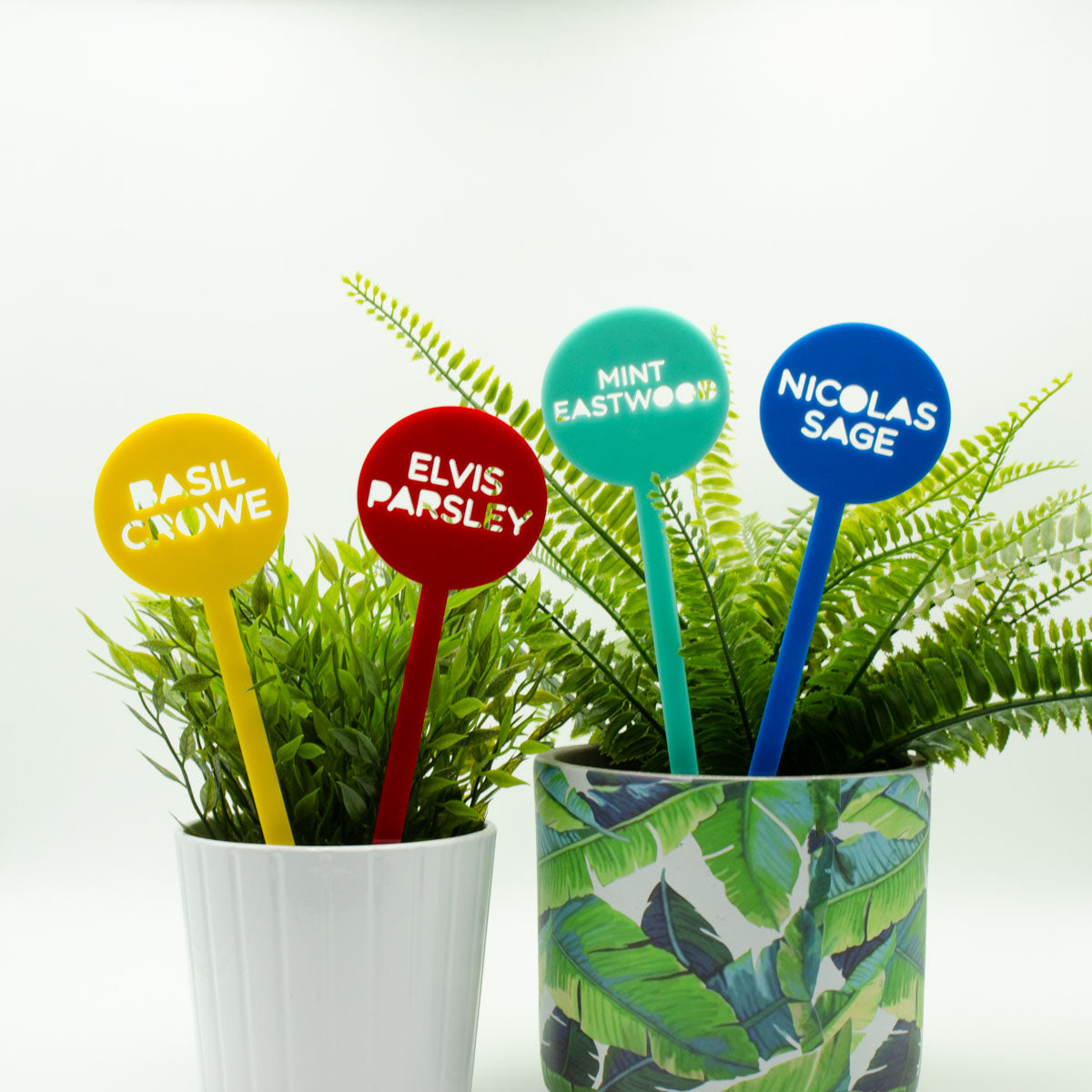 Humorous Herb Pot Plant and Garden Marker Sticks Pack of 4 or 8 - Harlem Starlet
