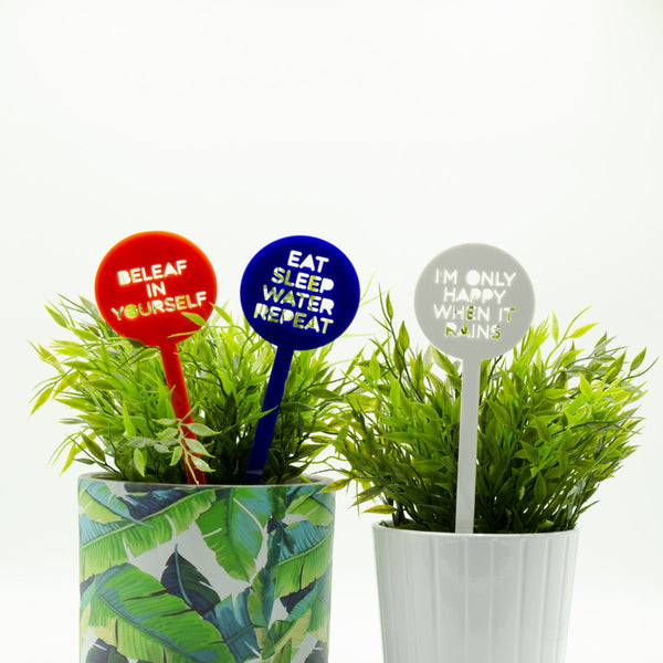 Punny Pot Plant Sticks 3 Pack - Great as Garden Markers! - Harlem Starlet