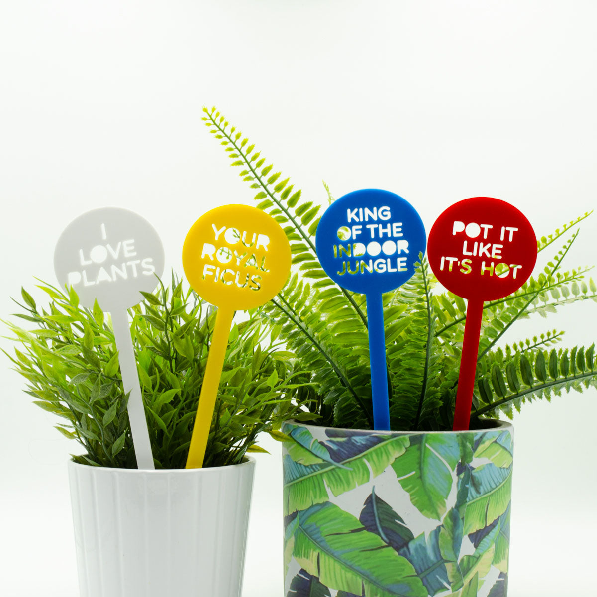 King of the Indoor Jungle Pot Plant Sticks - Set of 4 - Harlem Starlet