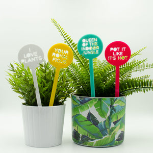 Queen of the Indoor Jungle Pot Plant Sticks - Set of 4 - Harlem Starlet