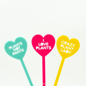 I Love Plants / Crazy Plant Lady / Plants not Pants Punny Sticks 3 Pack - Harlem Starlet