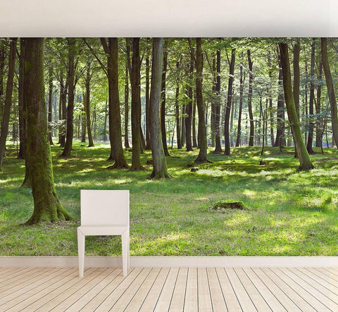 Woodland Forest Self Adhesive Wallpaper - Oakdene Designs - 1