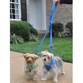 dog leads - training leashes - leashes - puppy - BeauJax Boutique