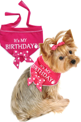 It's My Birthday Dog Scarf in Hot Pink - Scarves - BeauJax Boutique
