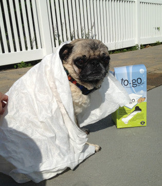 To-Go Dog Towel - Clean Up - BeauJax Boutique