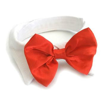 Red Satin Bow and White Cotton Dog Collar - Weddings - BeauJax Boutique