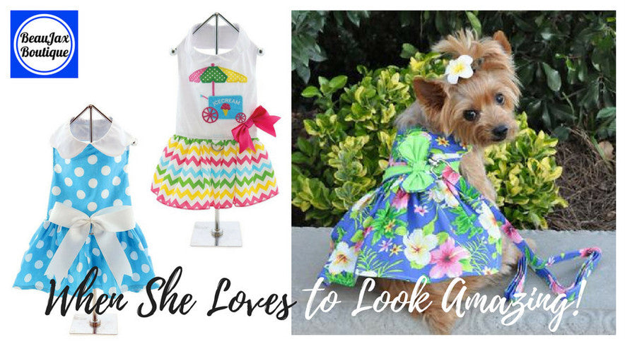 When she loves to look amazing - new dog dresses for spring and summer