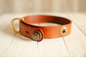 Leather Luxx Collar
