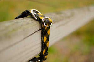 Yellow Buffalo Plaid