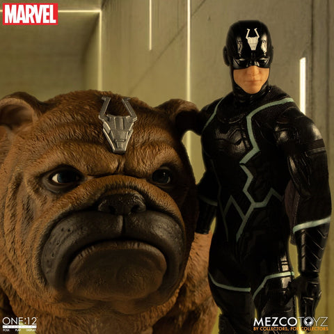 Blackbolt and Lockjaw One:12 Collective Boxed Set