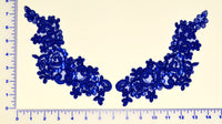 Royal Appliqué Pair With Sequins And Beads