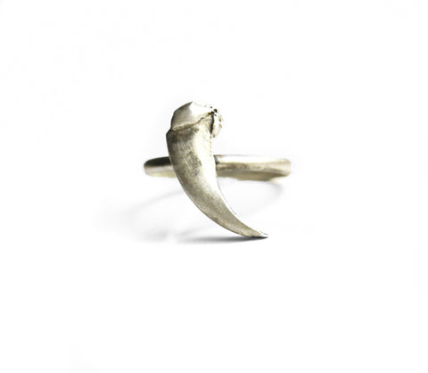 Taxidea Ring Large Claw by Birds N Bones Jewelry