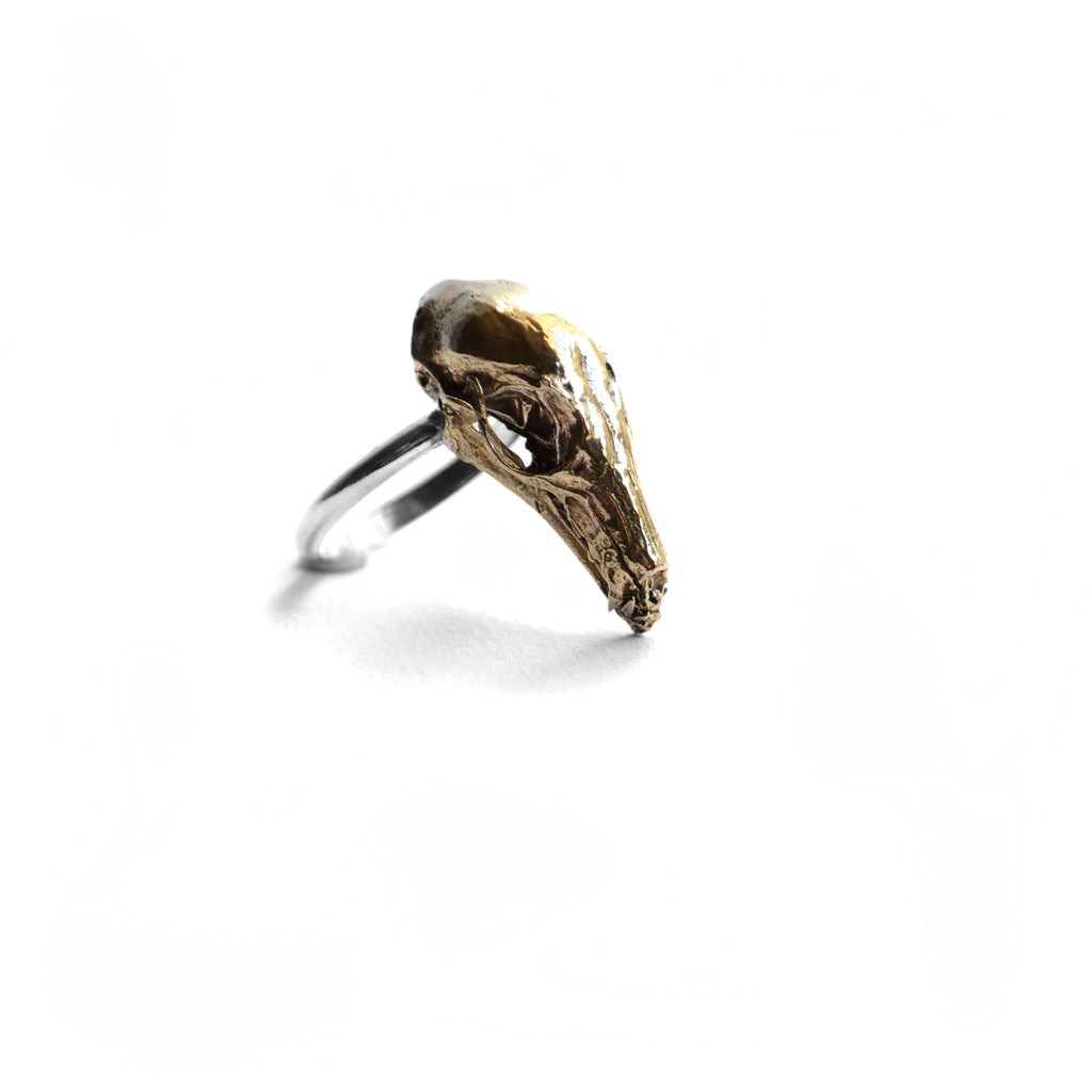 Hydra Maximus Skull Ring . Brass birds n bones jewelry