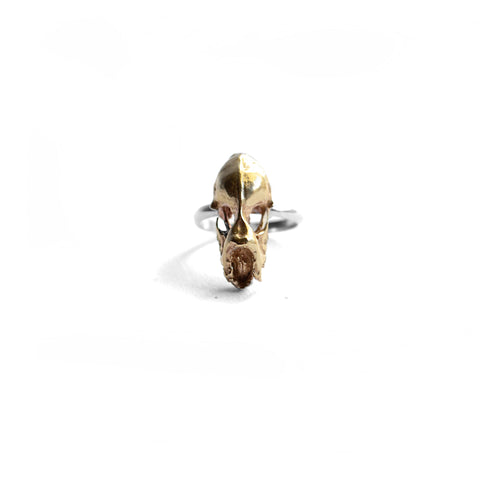 Hydra Minimus Skull Ring . Brass