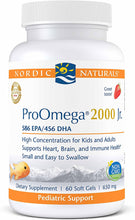 Load image into Gallery viewer, Nordic Naturals ProOmega 2000 Jr. 60 Gels - Medical Grade Nutrients