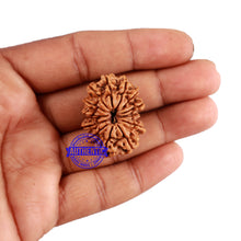 Load image into Gallery viewer, 13 Mukhi Nepalese Rudraksha - Bead No. 135