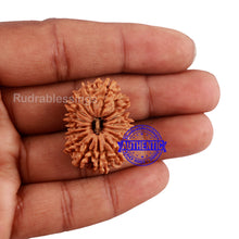 Load image into Gallery viewer, 16 Mukhi Rudraksha from Nepal - Bead No. 78