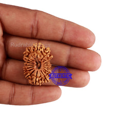 Load image into Gallery viewer, 18 Mukhi Rudraksha from Nepal - Bead No. 51