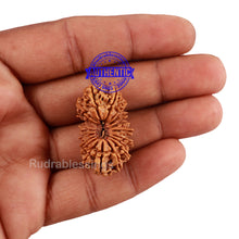 Load image into Gallery viewer, 19 Mukhi Nepalese Rudraksha - Bead No 2
