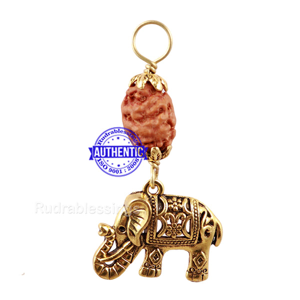 2 Mukhi Indonesian Rudraksha with Lucky Charm Elephant Pendant