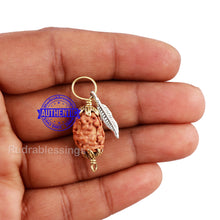 Load image into Gallery viewer, 2 Mukhi Indonesian Rudraksha with Lucky Charm Feather Pendant