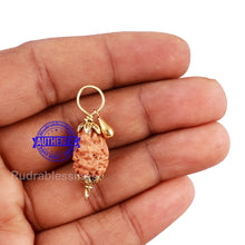 Load image into Gallery viewer, 2 Mukhi Indonesian Rudraksha with Lucky Charm Gada Pendant