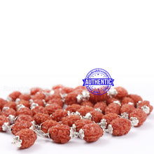 Load image into Gallery viewer, 3 Mukhi Agni Rudraksha Mala - 1 (54+1) (Pure Silver)