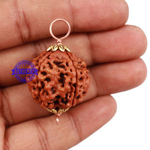 5 Mukhi Rudraksha from Nepal - Bead No 129