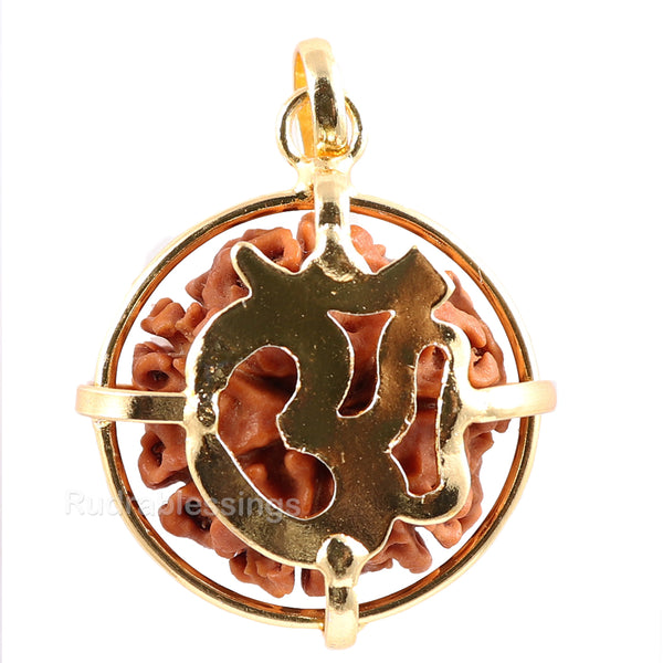 7 Mukhi Nepalese Rudraksha in Gold Plated Locket