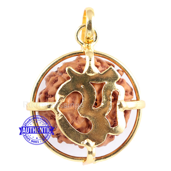 8 Mukhi Rudraksha from Indonesia - Bead No. 159 (Gold Plated bracket)