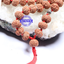 Load image into Gallery viewer, 8 Mukhi Asthavinayaka Rudraksha Mala - (54+1 beads - Indonesian) with Accessory