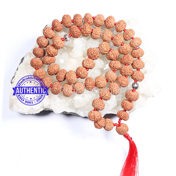 8 Mukhi Asthavinayaka Rudraksha Mala - (54+1 beads - Indonesian) with Accessory