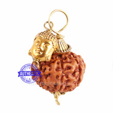 Load image into Gallery viewer, 7 Mukhi Rudraksha from Indonesia - Bead No. 13 (With Buddha Accessory)