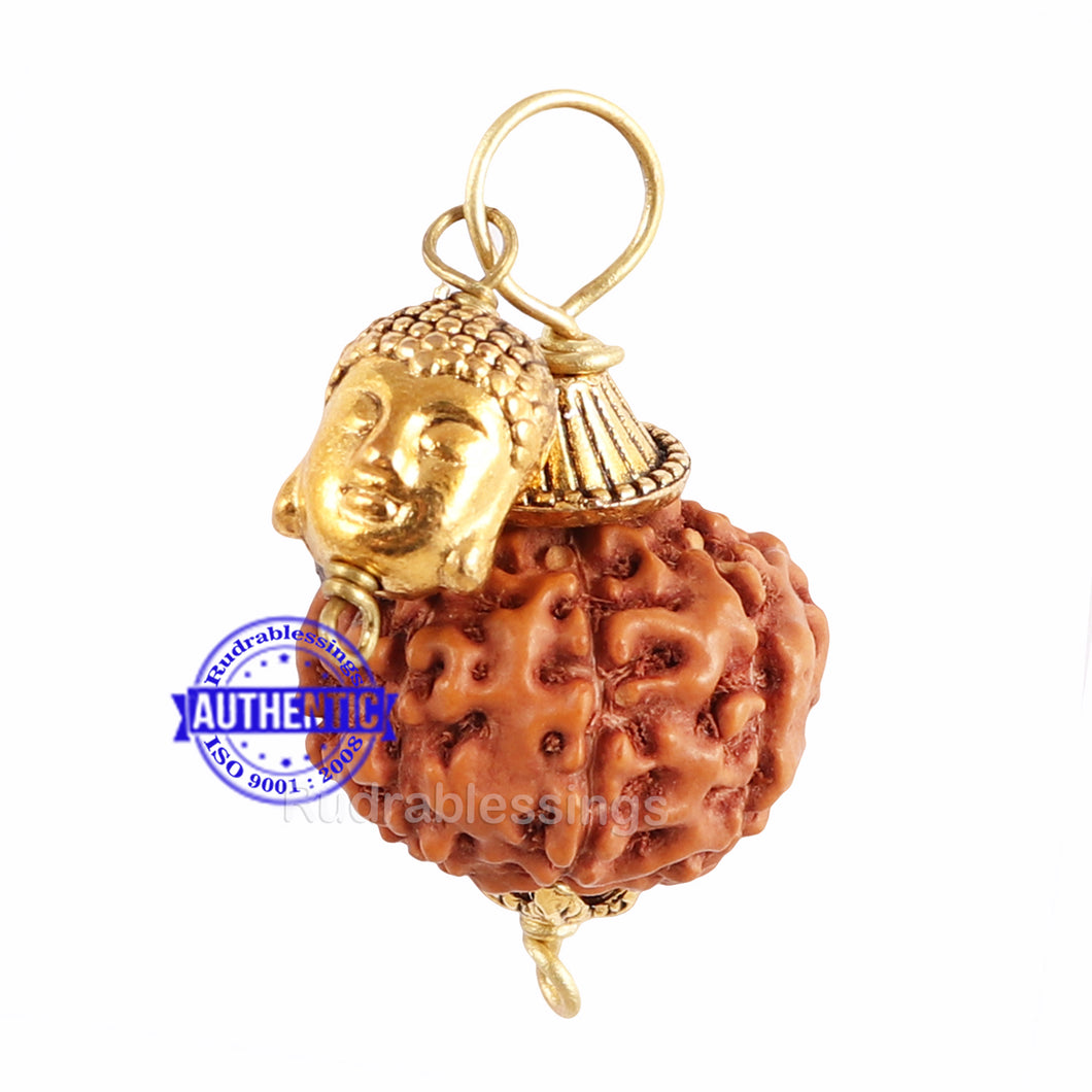 9 Mukhi Rudraksha from Indonesia - Bead No. 203  (with buddha accessory)