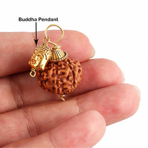 7 Mukhi Rudraksha from Indonesia - Bead No. 13 (With Buddha Accessory)