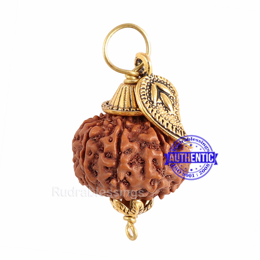 9 Mukhi Rudraksha from Indonesia - Bead No. 193  (with Belpatra accessory)