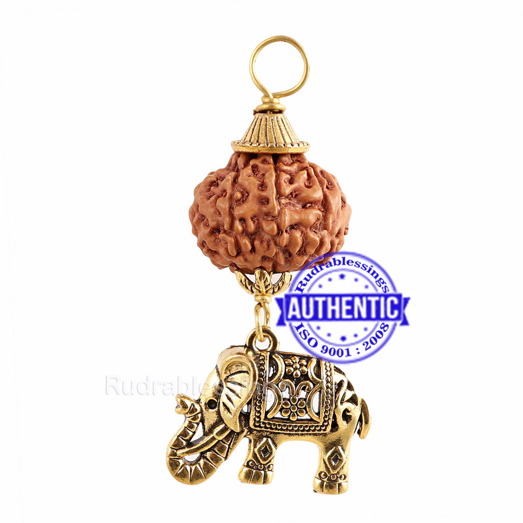 7 Mukhi Rudraksha from Indonesia - Bead No. 4 (with elephant accessory)