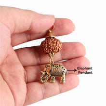 Load image into Gallery viewer, 7 Mukhi Rudraksha from Indonesia - Bead No. 4 (with elephant accessory)