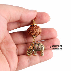 9 Mukhi Rudraksha from Indonesia - Bead No. 194 (with elephant accessory)