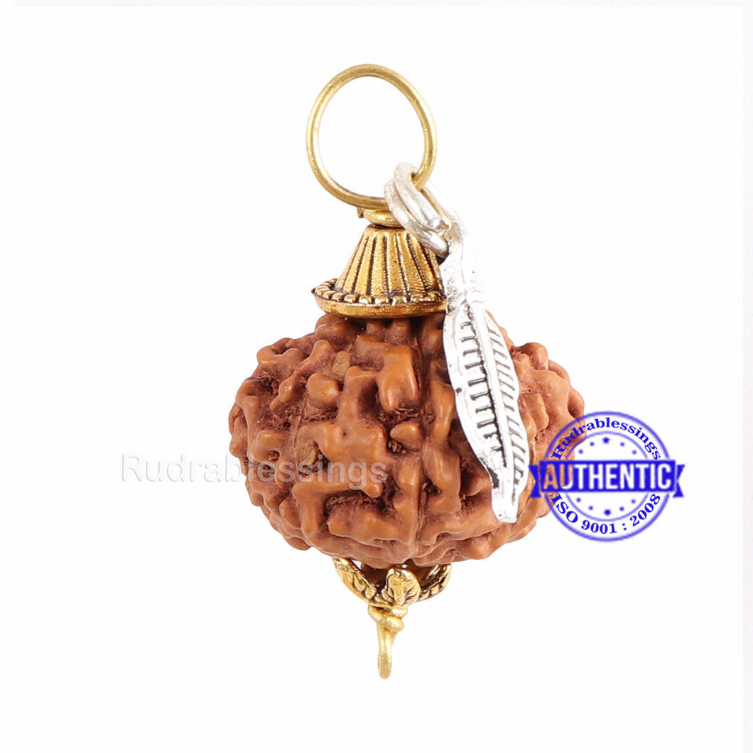 10 Mukhi Rudraksha from Indonesia - Bead No. 140 (with feather accessory)
