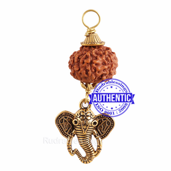 7 Mukhi Rudraksha from Indonesia - Bead No. 8 (with elephant accessory)