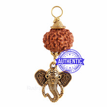 Load image into Gallery viewer, 10 Mukhi Rudraksha from Indonesia - Bead No. 142 (with elephant accessory)